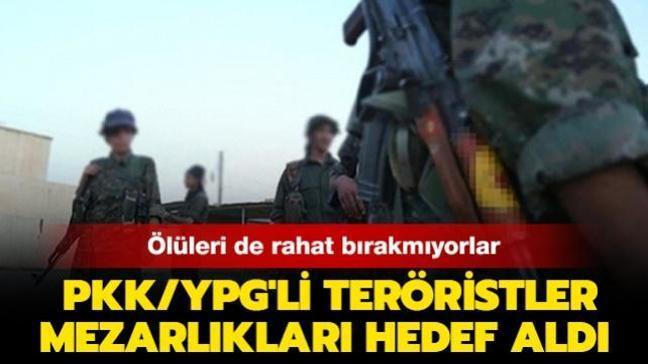 Ölüleri de rahat bırakmıyorlar! PKK/YPG'li teröristler mezarlıkları hedef aldı