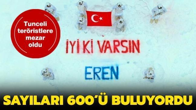 Tunceli'de sayıları 600'ü bulan teröristlerin 20'lere kadar indirildiği belirtildi