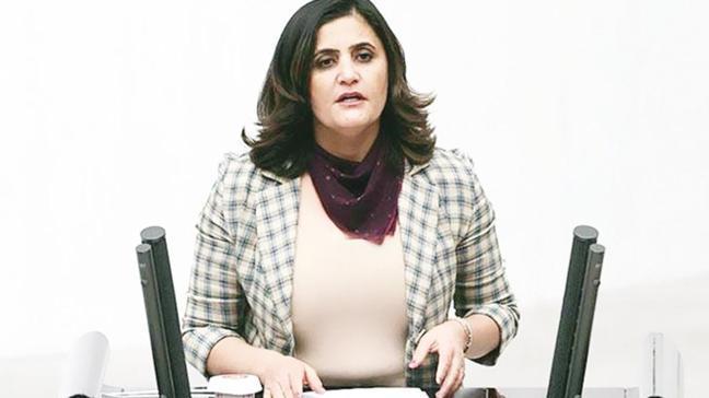 Tutanaklarda çarpıcı ifadeler! HDP Ağrı Milletvekili Dirayet Dilan Taşdemir o tarihte Erbil'e uçmuş