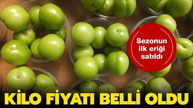 Sezonun ilk eriği Mersin'de kilogramı 500 TL'den satıldı