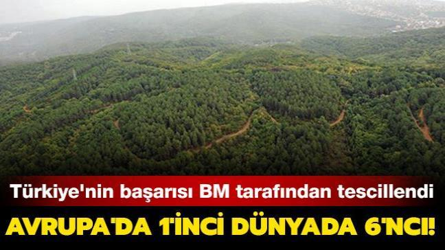Türkiye'nin orman varlığını artırma başarısı BM tarafından da tescillendi