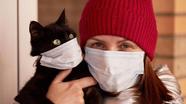 Mutasyonlu virüs evcil hayvanların kalbini vuruyor