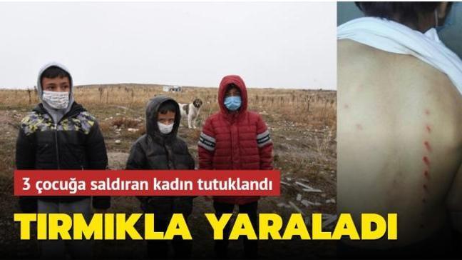 Kütahya'da bir kadın köpeklerle oynayan 3 çocuğa tırmıkla saldırdı