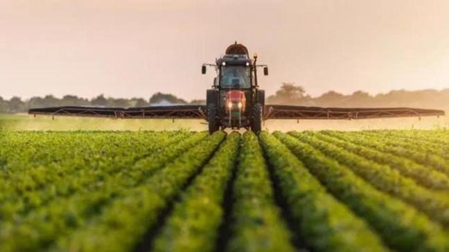 Adana Karataş'ta 15.632 m2 tarım arazisinin satışı yapılıyor!