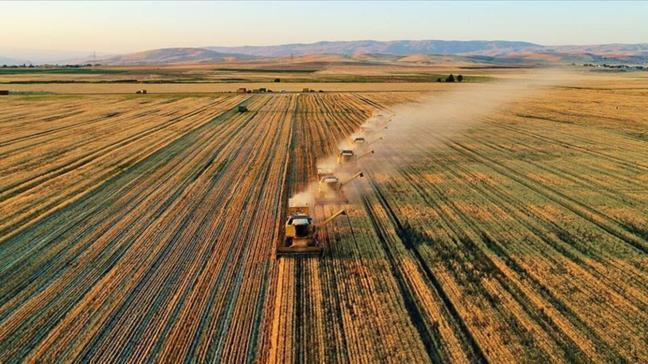 Adana'da Yumurtalık'ta tarım arazisi icradan satılık!