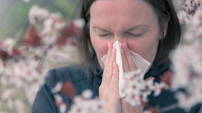 """Polen alerjisi ile kovid-19 arasındaki fark nasıl ayırt edilir"""""""