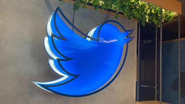 Twitter hesabınızı korumanın 7 yolu