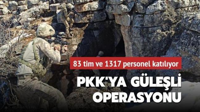 """İçişleri Bakanlığı: """"'Eren-12 Güleşli Operasyonu' başladı"""""""