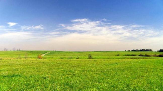 Iğdır Merkez'de tarım arazisinin satışı yapılacak!