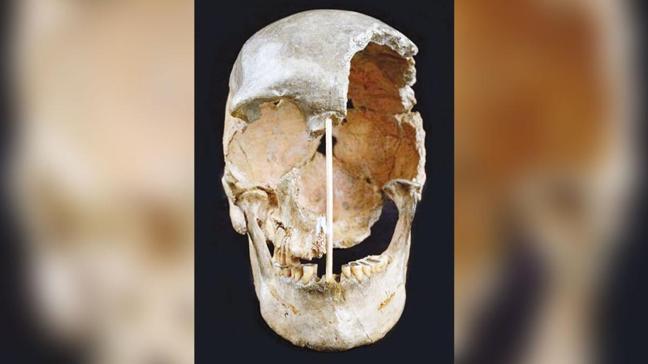En eski DNA: 45 bin yaşında