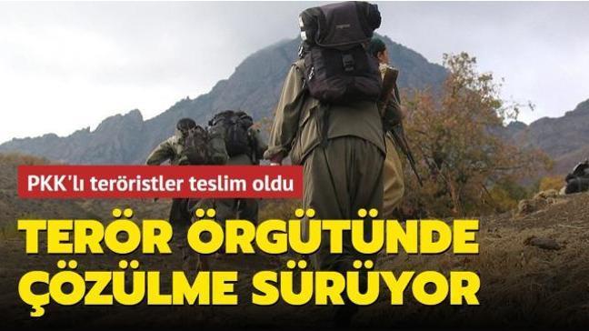 İçişleri Bakanlığı duyurdu... 5 PKK'lı terörist teslim oldu