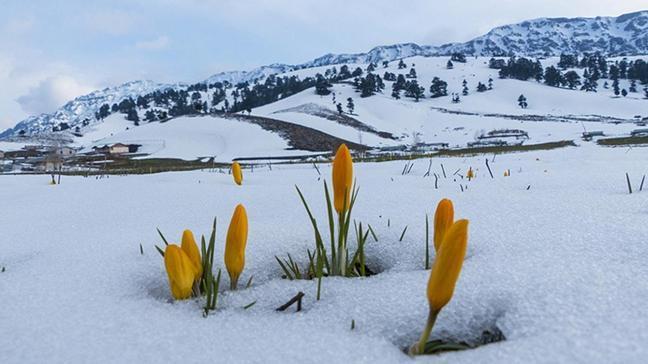 Meteorolojiden Doğu Anadolu ve Doğu Karadeniz için kar erimesi uyarısı