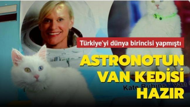 Türkiye'yi dünya birincisi yapmıştı: NASA astronotunun Van kedisi hazır