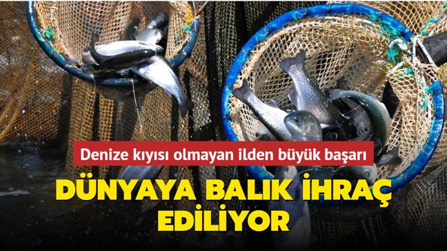 Denize kıyısı olmayan Manisa dünyaya balık ihraç ediyor