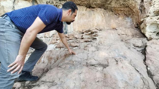 Mersin'de bir mağarada 8 bin yıllık hayvan resimleri arkeologları heyecanlandırdı