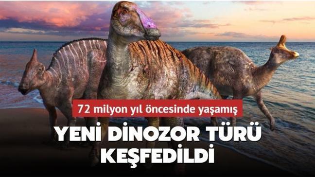 72 milyon yıl öncesinde yaşamış yeni dinozor türü keşfedildi