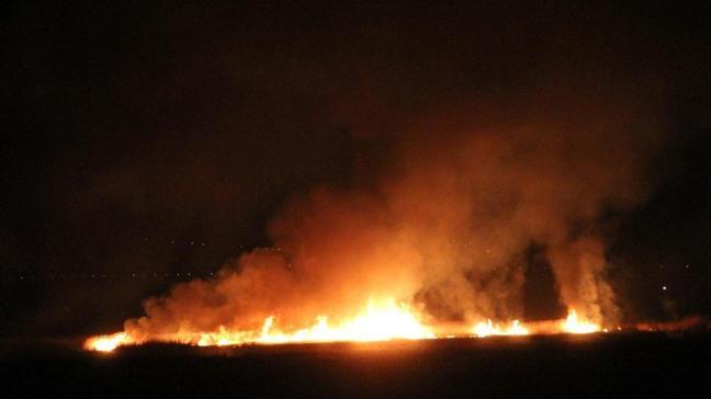 Erzincan'da bir çok kuş ve bitki türünü barındıran Ekşisu Sazlığı'nda yangın