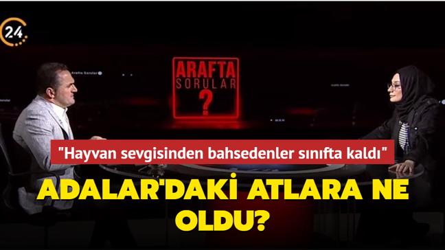 """Beyoğlu Belediye Başkanı Yıldız: """"Hayvan sevgisinden bahsedenler, Adalar'daki atlar konusunda sınıfta kaldı"""""""